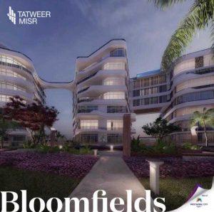 بلوم فيلدز لشركة تطوير مصر